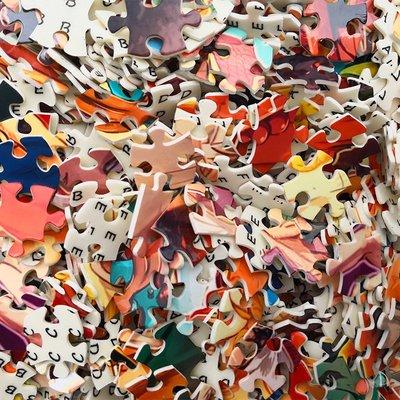 DREAM-環保塑料拼圖家庭教師拼圖1...