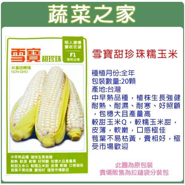 【蔬菜之家】G34.雪寶甜珍珠糯玉米種子20顆(耐熱、耐濕、耐寒、好照顧,包穗大且產量高.蔬菜種子)