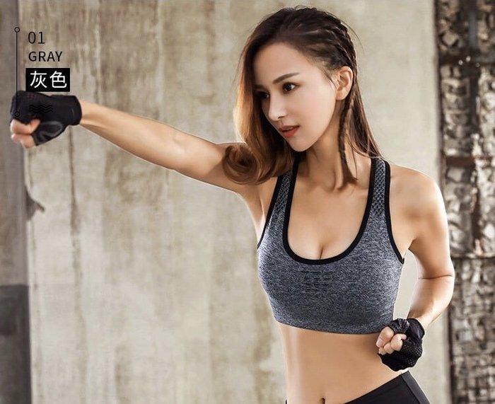 MAXIMUM 高強度機能 運動內衣 專業級 防震 女生運動內衣