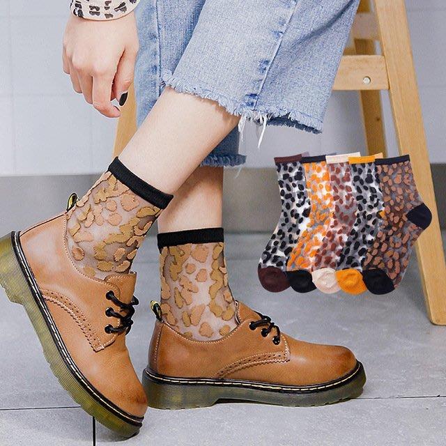 *╮S.water shop╭* 可愛豹紋 水晶襪/玻璃/絲襪/堆堆襪 FN#00278-02 共5色 (現貨)
