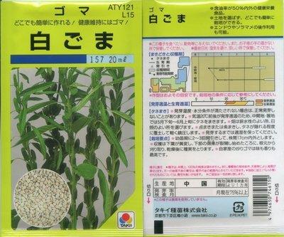 【花之鄉小舖】進口高級日本蔬菜種子--白芝麻