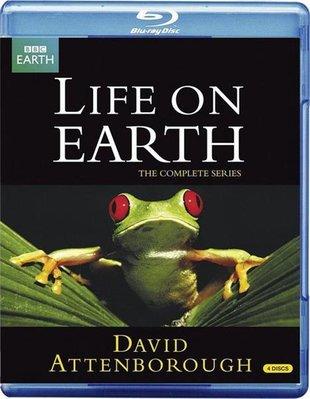 【藍光電影】BBC 生命的進化 4碟 Life on Earth(1979)37-123|37-124|37-125|37-126