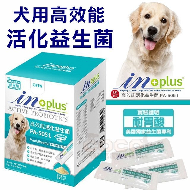 COCO*贏IN-PLUS犬用高效能活化益生菌120g(5gx24小包)專利益生菌PA-5051/狗狗腸胃保健品