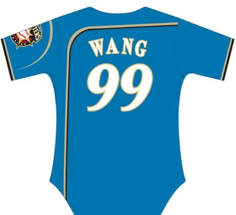 【日職嚴選】現貨 日本職棒 北海道日本火腿鬥士隊 99號 大王 王柏融 天空藍 客場球衣