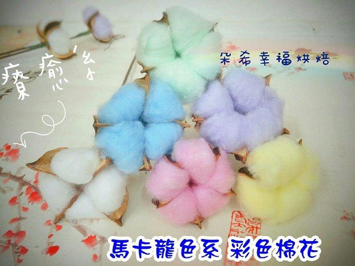6色 現貨供應  馬卡龍色 彩色棉花 乾燥花 拍照道具 攝影道具  馬卡龍色 棉花 不凋花 永生花 朵希幸福烘焙