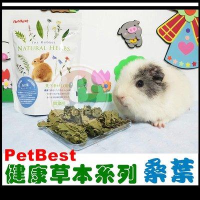 《Life M》【萌寵吃貨】PetBest 100%天然健康草本系列機能性食品-桑葉
