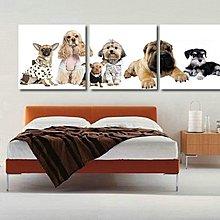 「Draw」寵物現代掛畫三聯畫 時尚簡約兒童房臥室裝飾畫 歐式無框畫壁畫      「Draw」