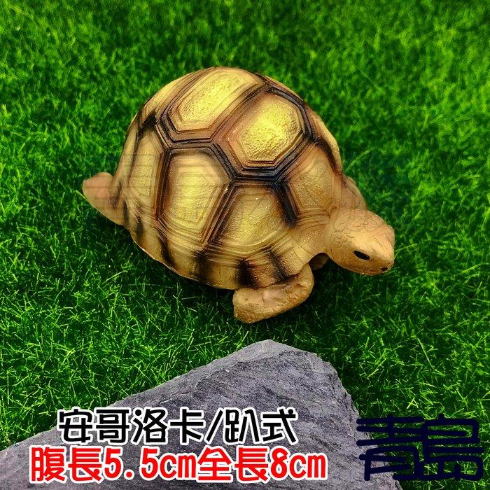 Y。。。青島水族。。。A1中國NOMO諾摩---仿真陸龜模型 3D擬真模型 烏龜/陸龜公仔==安哥洛卡/趴式