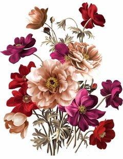 小妮子的家@手繪系列水移畫/古典玫瑰轉印貼紙/家具貼~2.27