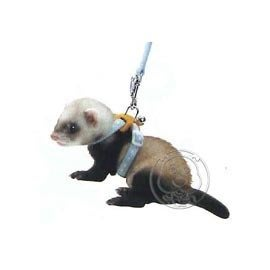 【🐱🐶培菓寵物48H出貨🐰🐹】日本MARUKAN》貂用外出牽繩 (4種顏色)特價285元