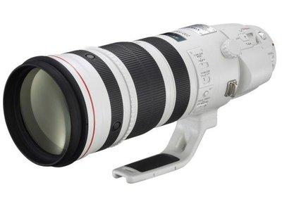 *兆華國際* Canon EF 200-400mm F4L IS USM Extender 1.4x 佳能公司貨