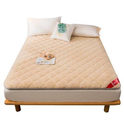 床墊 羊羔絨可折疊床墊軟墊家用榻榻米學生宿舍單人租房專用墊被褥子小尺寸價格 中大號議價