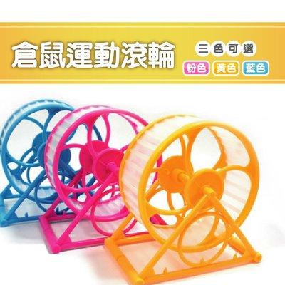【億品會】老鼠 倉鼠 滾輪 跑輪 運動輪 靜音跑輪 簡易組裝款