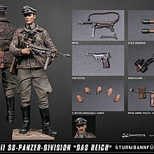 DAMTOYS 1/12 POCKET ELITE SERIES WWII SS-Panzer-Division Das Reich Figure 德軍 軍官