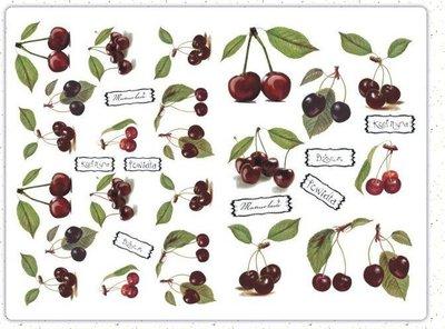 波蘭 Decoupage Paper(專用紙)A3編號PL-D-0231~蝶古巴特 餐巾紙拼貼 彩繪 黏土DIY手作材料