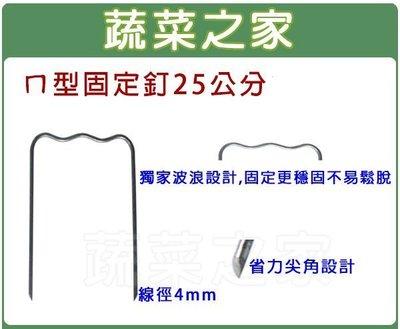 全館滿799免運【蔬菜之家012-A2...