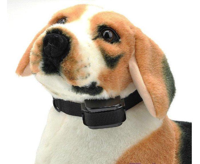 充電式 狗訓練項圈/止吠項圈/聲音 震動 電擊 信號燈 四合一 300公尺遙控 (B02)