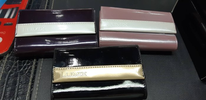 【eWhat億華】Panasonic Lumix NVJ-FX20102 FX 系列 適用 相機包 大出清 紫色【4】