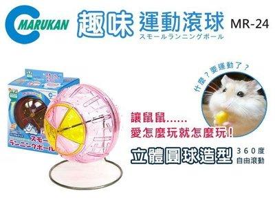 SNOW的家【訂購】日本MARUKAN 趣味運動滾球 MR-24 滾輪 跑球 (80030265