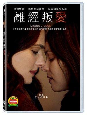 (全新未拆封)離經叛愛 Disobedience DVD(得利公司貨)