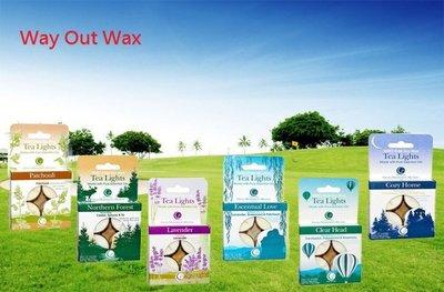 【蓋亞美舖】預購Way Out Wax, Tea Lights 純天然 精油香薰蠟燭 茶燈 多種味道 4個一組 美國進口