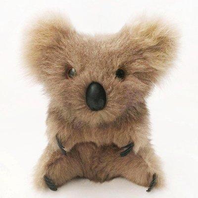 Koala澳洲無尾熊
