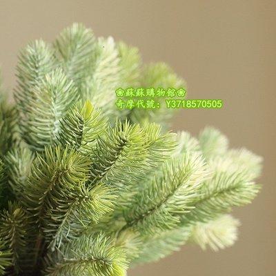 ❀蘇蘇購物館❀塔松針模擬植物松果松樹聖誕樹花環客廳廚房百搭擺放裝飾