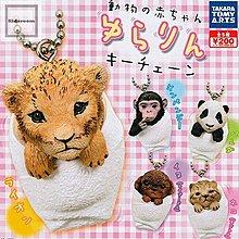Takara 動物の赤ちゃん ゆらりんキーチェーン 動物BB匙扣 (全套5隻)