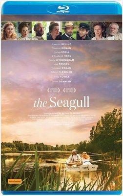 【藍光電影】契訶夫之海鷗 / 海鷗 / THE SEAGULL (2018)
