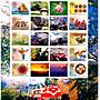 (個人化郵票12)2009阿里山櫻花季