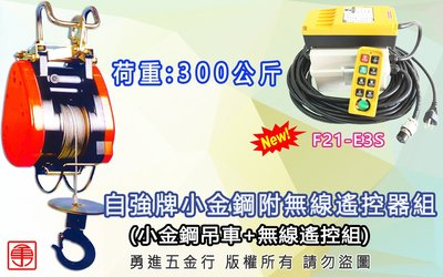300KG改遙控器 電動吊車 無線遙控 天車遙控 高樓小吊車 小金剛吊車 小金鋼 F21 E3 自強 小金鋼附無線遙控器