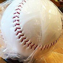大空白球_躍動_團隊專用含加底座全組總統型特空白棒球空白簽名球簽名專用球簽名棒球盒框收藏壓克力簽名框放簽名球收納方框