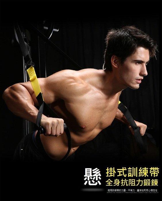 大全配運動專業版 美國海豹部隊專用拉力繩懸吊式訓練系統核心訓練肌耐力鍛鍊腹肌懸掛式訓練帶懸吊訓練繩懸掛系統 TRX