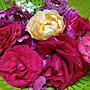 H.E.古坑三號食用玫瑰花瓣~~自然農法,無毒栽種、酵素施肥,低溫烘焙。禮盒特價320,滿千免運(12±1公克)