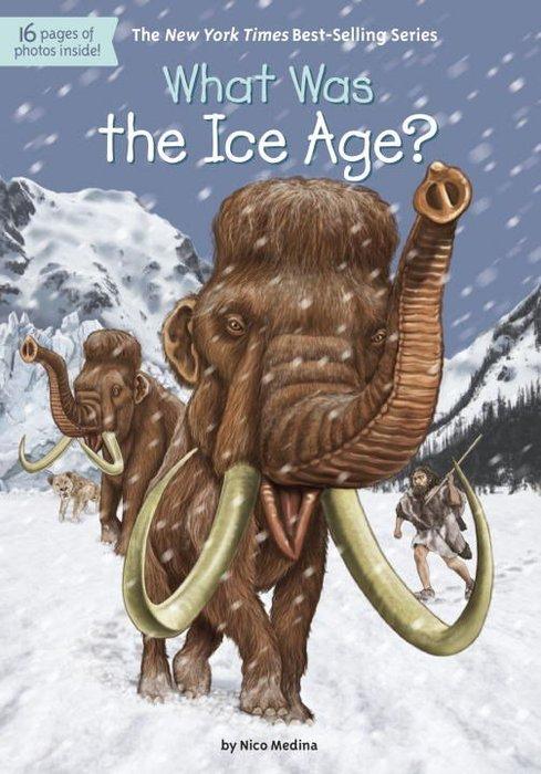 *小貝比的家*WHAT WAS THE ICE AGE/平裝書/7~12歲/歷史