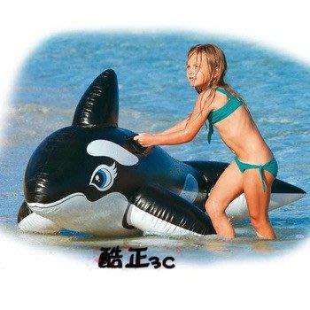 【酷正3C】INTEX-58561大黑鯨魚坐騎 水上玩具 充氣動物坐騎