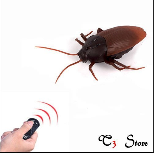【T3】現貨當天出 遙控蟑螂 盒裝附贈電池 【HT14】