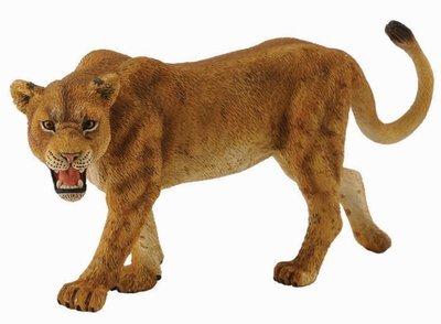 【阿LIN】88415A 母獅子 PROCON CollectA 動物模型 仿真動物模型 動物 叢林系列 教學模型