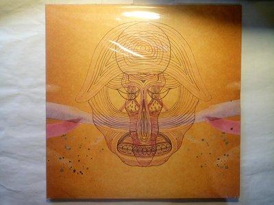 嬉皮遊走21世紀 Devendra Banhart 2009年What Will We Be 黑膠唱片,錄音音響效果好