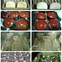 自動洗碗機 桌下型商用洗碗機 營業用洗碗機 商用洗碗機 高溫殺菌洗碗機 洗碗機 桌下型洗碗機