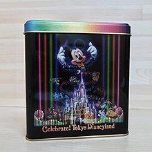 日本迪士尼 35週年交響樂鐵盒 迪士尼鐵盒 絕版