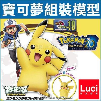 神奇寶貝 皮卡丘 No.19 組裝模型 萬代 精靈寶可夢 口袋怪獸  POKEMO 四肢可動 Pokemon GO