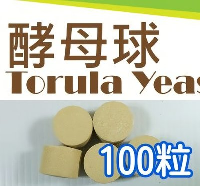 ~全舘滿790免運~TORULA YEAST酵母球/酵母錠(防治瓜果實蠅) 100粒/組【熊森活】