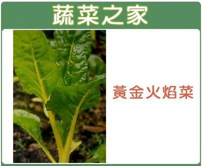 【蔬菜之家】A42.黃金火焰菜種子10...