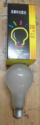 台灣日光燈泡 250w燈泡 E27 磨砂 鎢絲燈泡 110V 黃光 ~ecgo五金百貨