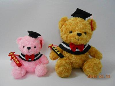 畢業熊 泰迪熊 熊熊 20公分畢業禮物...