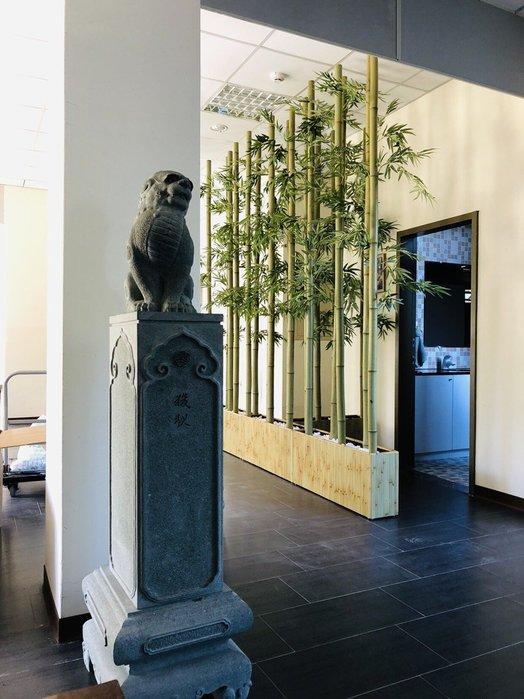 竹盆栽裝置藝術造景--S1000-BF120