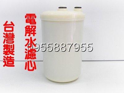 [源灃淨水]不是原廠公司貨 台灣製造 適用各品牌電解水機濾心Angel/美生水 不適用TOYO
