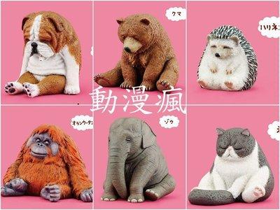 【動漫瘋】 轉蛋 扭蛋 休眠動物園 P3 第3代 單售 長臂猿