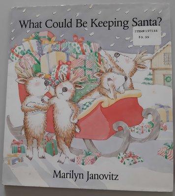 英文繪讀本What Could Be Keeping Santa?聖誕夜 八隻麋鹿等候聖誕老人上路前的一些疑惑....